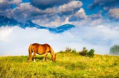 Amazing mountain landscape Stock Photo
