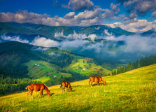 Amazing mountain landscape Royalty Free Stock Image