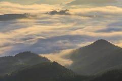 Free Amazing Mountain Landscape With Dense Fog. Stock Image - 49859951