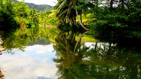 Amazing Mountain River in Tasikmalaya royalty free stock photography