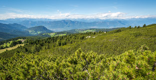Amazing mountains summer landscape in Dolomites, South Tyrol, Italy. The Oclini Pass Stock Photo