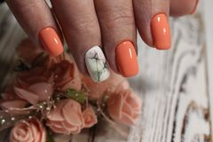 Amazing natural nails. royalty free stock photo