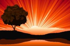 Amazing natural sunrise landscape. With tree silhouette,  illustration Stock Photo