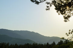 Amazing nature. Mountains in sunset, field nature Royalty Free Stock Photography