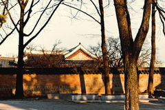 Amazing orange sunset light on Korean temple Seoul Royalty Free Stock Images