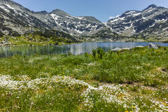 Amazing Panorama of Dzhano peak and Popovo lake, Pirin Mountain Stock Photography
