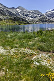 Amazing Panorama of Dzhano peak and Popovo lake, Pirin Mountain Stock Images