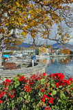 Amazing Panorama with flowers of Vevey Royalty Free Stock Photography