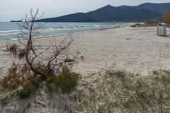 Amazing Panorama of Golden beach, Thassos island, Greece Royalty Free Stock Image