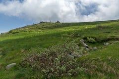 Panorama with green hills of Vitosha Mountain near Cherni Vrah Peak, Sofia City Region, Bulgaria Stock Image