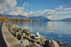 Amazing Panorama of Lake Geneva from town of Vevey, canton of Vaud Stock Photo