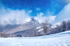Amazing panorama sunny winter landscape with snow covered trees Stock Photo