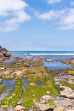 Amazing panoramic landscape with endless sea Royalty Free Stock Image
