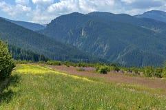 Amazing panoramic mountain vista. Royalty Free Stock Image