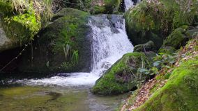 Amazing peaceful mountain cascade, fresh pure water flows over large green stones in Slow motion. Amazing peaceful mountain cascade, fresh pure water flows over stock video footage