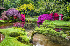Amazing Picturesque Scenery of Japanese Garden in the Hague & x28;Den Haag& x29; in the Netherlands Straight After the Rain Stock Photography