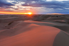 Amazing pink sunset in the Gobi Desert. Stock Photo