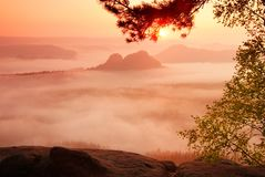 Amazing place with red dreamy mist in deep valley Stock Photo