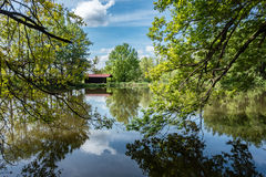 Amazing pond in summer forest and weekend house Royalty Free Stock Images