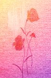 Amazing poppies on the canvas. Stock Photos