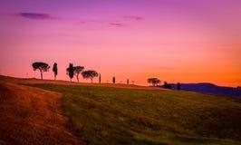 Amazing purple landscape Royalty Free Stock Photos