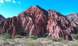 Amazing reddish rock formation with cactus. Amazing reddish rock formation with lonely cactus on it and clear blue sky stock photos