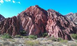 Amazing reddish rock formation with cactus stock photos