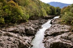Amazing river in the green mountain forest. royalty free stock photo