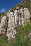 Amazing rock formation at Giant`s Causeway stock images