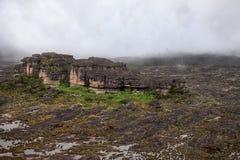 Amazing rocky terrain of mount Roraima covered Stock Photos
