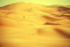 Amazing sand dune formations in Liwa oasis, United Arab Emirates Stock Image