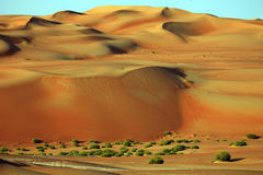Amazing sand dune formations in Liwa oasis, United Arab Emirates. Amazing sand dune formations, Liwa oasis, United Arab Emirates Stock Images