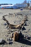 Amazing scene of unearthed shipwreck after Nor`Easter, Short Sands Beach, Maine. Incredible sight on the beach after Nor` Easter 2018 unearthed what`s believed Royalty Free Stock Images
