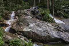 Amazing scenery of tropical waterfall flowing through. The beautiful green forest stock image