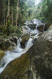 Amazing scenery of tropical waterfall flowing through the beautiful green forest. Selective focus shot stock image