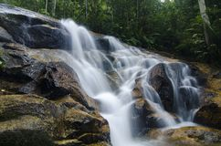 Amazing scenery of tropical waterfall flowing through the beautiful green forest. Selective focus shot royalty free stock images