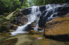 Amazing scenery of tropical waterfall flowing through the beautiful green forest. Selective focus shot stock images