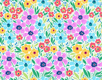 Amazing seamless floral pattern. With bright colorful flowers and leaves on a white background. The elegant the template for fashion prints. Modern floral Stock Photography