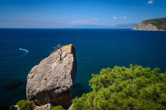 Amazing seascape on a rocky mountain. Afternoon bright seascape. Withered tree on a huge piece of rock by the sea Royalty Free Stock Photo