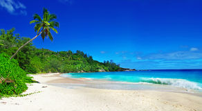 Amazing Seychelles Royalty Free Stock Photography