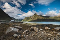 Amazing shores of Flakstadpollen sea bay on Lofoten, Norway royalty free stock image