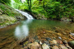 Amazing small waterfall in the green forest Royalty Free Stock Photos