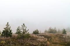Amazing Spooky Winter Landscape Royalty Free Stock Photography