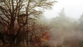 Amazing Spooky Winter Landscape Royalty Free Stock Images