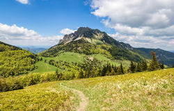 Amazing spring mountain landscape with stony peak Stock Photos