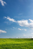 Amazing spring/summer countryside Stock Photography