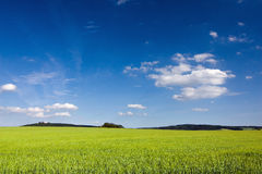Amazing spring/summer countryside Royalty Free Stock Photos