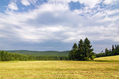 Amazing spring/summer countryside Royalty Free Stock Photo