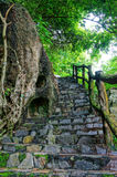 Amazing stone staircase, fence, tree Stock Photos