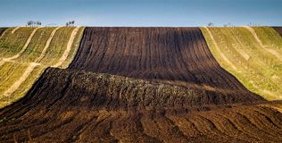 Amazing stripe patterns on waved fields of South Moravia Stock Photos